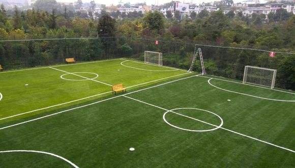 足球场草坪案列